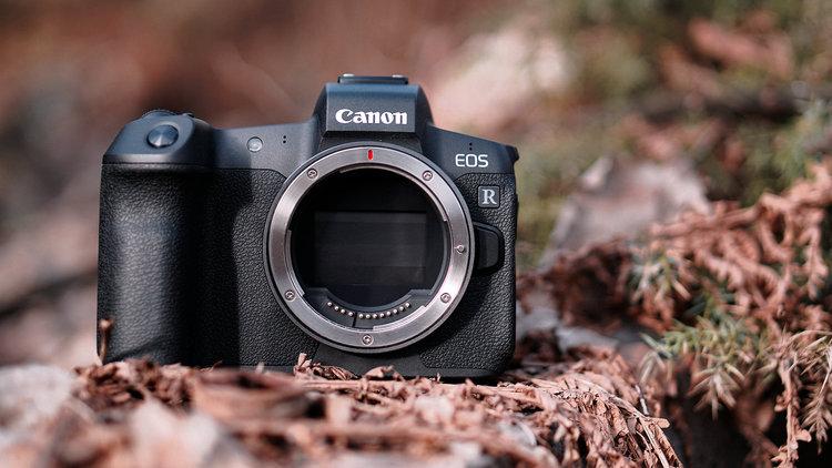 Canon EOS R – test aparatu FF. Jak wypada na tle pełnoklatkowej konkurencji? -