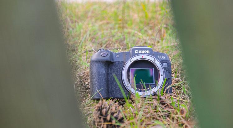 Canon EOS RP – test. Możliwości pełnej klatki w świetnej cenie -