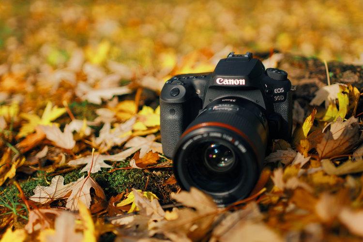 Canon EOS 90D – test lustrzanki. Solidny konkurent dla bezlusterkowców -